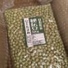 青大豆で味噌の仕込み