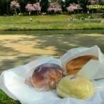 賀茂川と桜あんぱん
