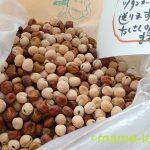 ツタンカーメンのえんどう豆/乾物