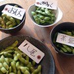 枝豆レッスン