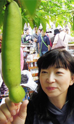 豆・豆料理探検家、豆料理アドバイザー